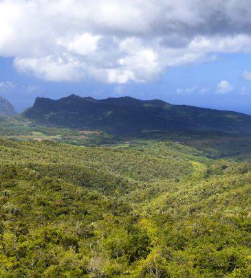 Countryside-Mauritius