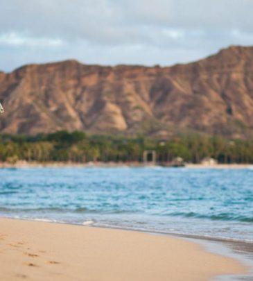 06342_WaikikiBeachOahu