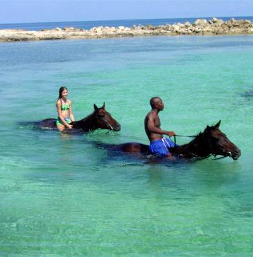 Jamaica-horseback-riding10